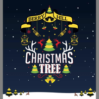 Berry Hill Christmas Lights
